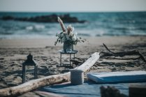 ©ben-lévy-photographe_despinoy-wedding-planner-montpellier-provence-domaine-sauvage-camargue (23)